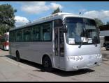 Автобус Hyundai 33 места